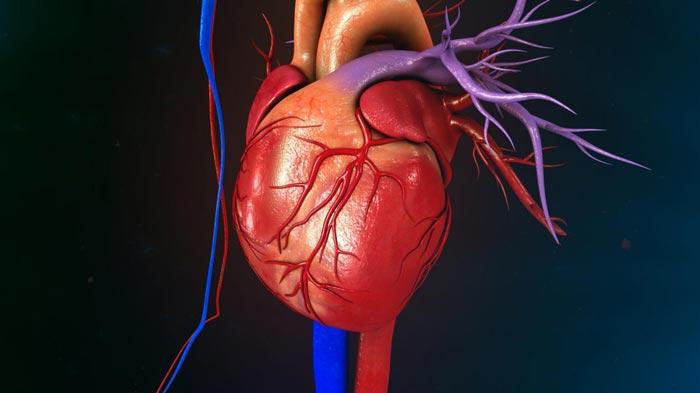 از تاثیرات حمام آب گرم بر سلامت قلبتان چه می دانید؟!