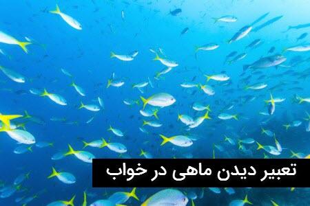 خواب دیدن ماهی چه تعبیری دارد؟