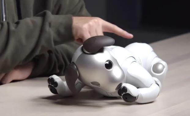 معرفی سگ روباتیک