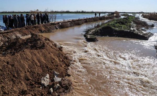 شکستن سیل بند روستای سفاک شهرستان باوی به دست روستاییان و ورود سیلاب به شرکت نیشکر دهخدا