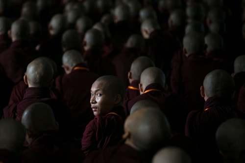 اجلاس سالانه راهبان جوان بودایی در شهر یانگون میانمار/ خبرگزاری فرانسه