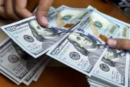 قیمت سکه و دلار در بازار ۹۹/۱۰/۲۳