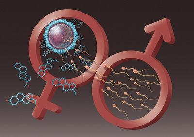 واکسن کرونا عقیم نمیکند، برعکس اسپرم مردان را افزایش می دهد