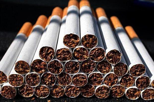 ساخت سیگار تقلبی در تهران با غذای حیوانات / عکس