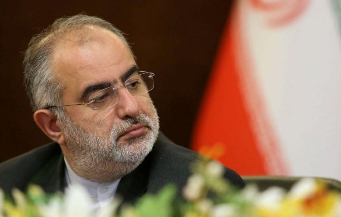 حسام الدین آشنا : حکیمباشی را دراز نکنید