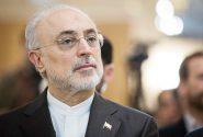 تایید کاندیداتوری علی اکبر صالحی در انتخابات ریاست جمهوری