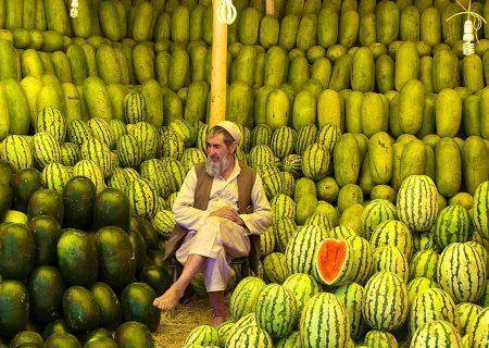 هندوانهفروش افغان / عکس