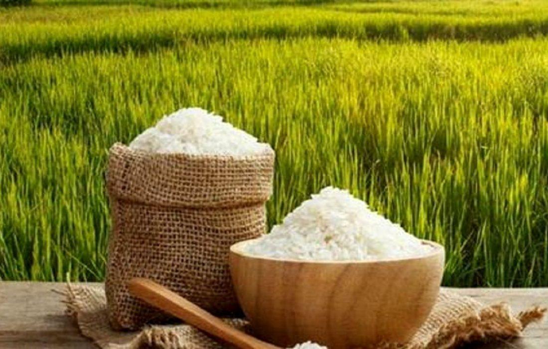 فقط ۱۵میلیون ایرانی توان خرید برنج دارند