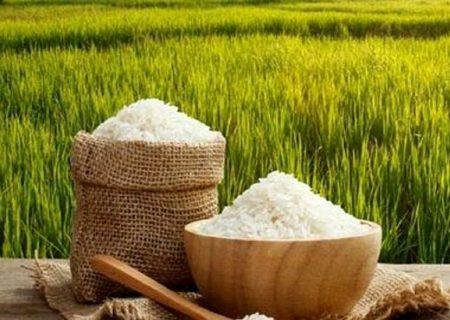 افزایش عجیب قیمت برنج و کاهش قدرت خرید مردم + لیست قیمت