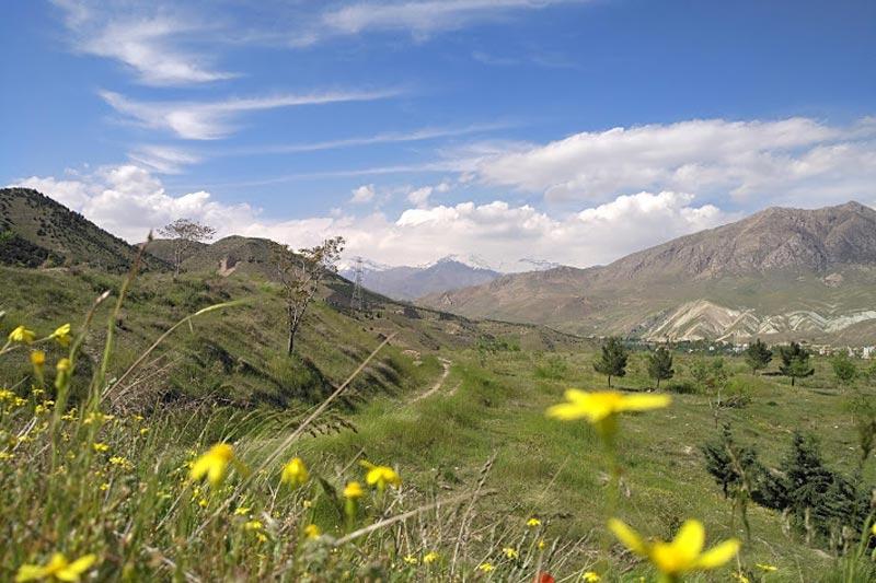 ماجرای عبور مترو از پارک ملی خجیر