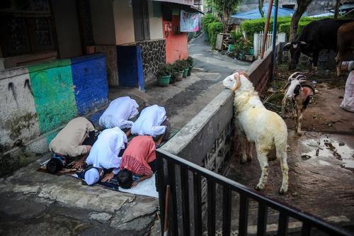عکسی خاص از نماز عید قربان در جاوه اندونزی