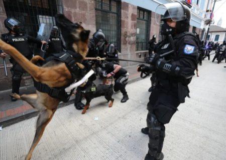 استفاده پلیس اکوادور از سگ برای مقابله با اعتراضات مردمی/ عکس