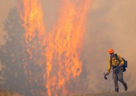 آتش سوزی جنگلی در آمریکا/عکس