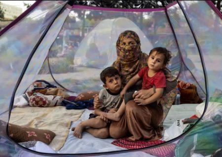 استقرار آوارگان جنگ افغانستان در پارک ها / عکس