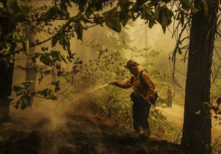 عملیات مهار آتش در جنگل های کالیفرنیا /عکس