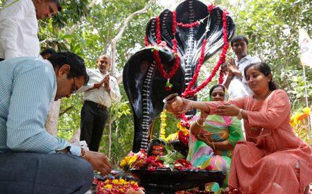 جشنواره آیینی هند در معبد مارها/ عکس
