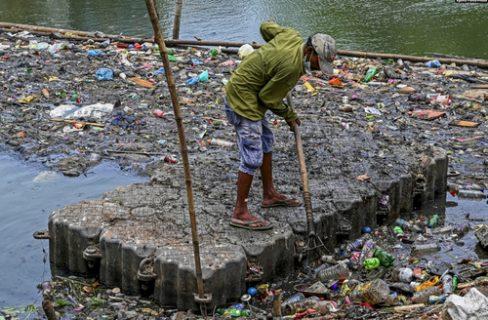 جمع کردن زباله ها از دریاچه ای سریلانکا/ عکس